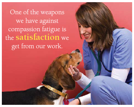 nurse emotion and compassion fatigue issues